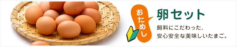 おためし卵セット 飼料にこだわった、安心安全な美味しいたまご。